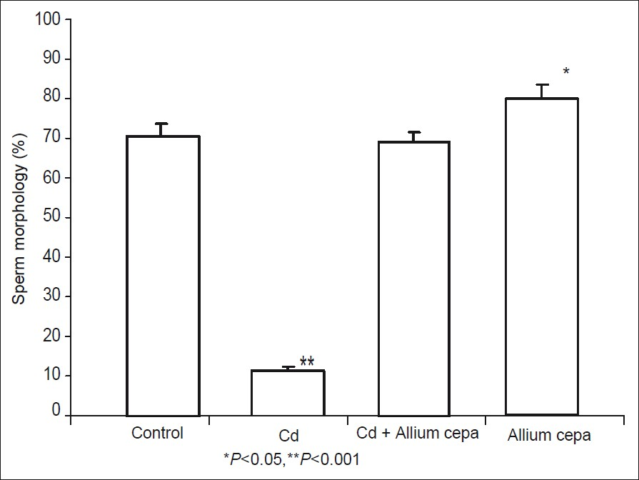 Testicular toxicity and sperm quality following cadmium exposure in