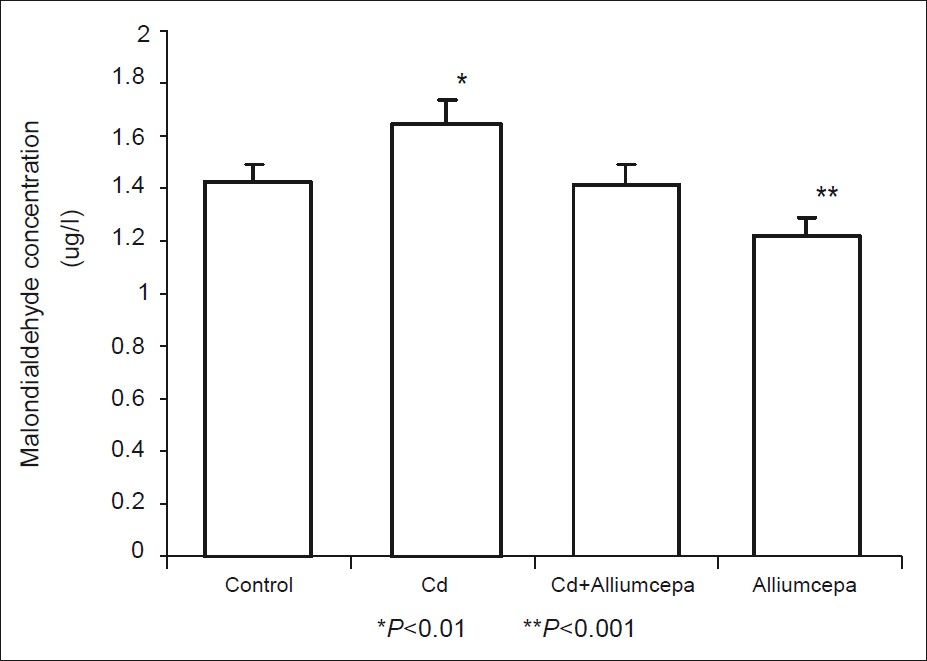 Figure 7: Effect of <i>Allium cepa</i> on malondialdehyde concentration on testicular tissue after testicular toxicity