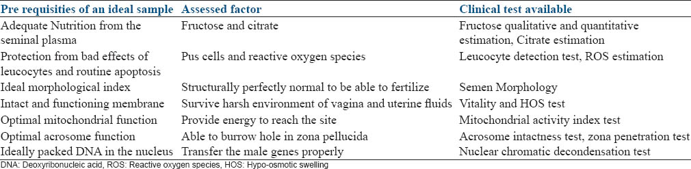 sperm Function of