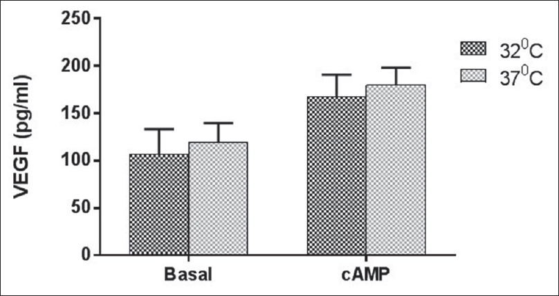 Figure 6: Mean VEGF (pg/ml) production by MLTC-1 cells in basal and cAMP group at 32°C and 37°C